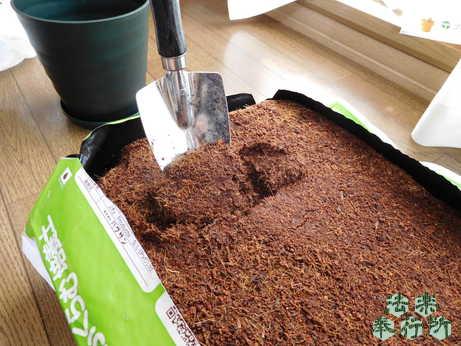 鉢に培養土をいれる