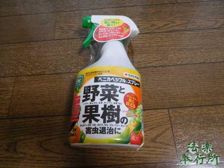 アブラムシ 殺虫剤